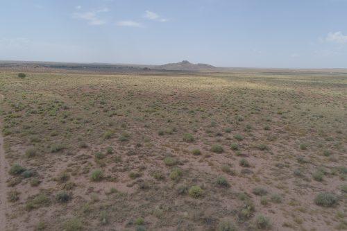 40 Acres near Holbrook, Navajo County, Arizona