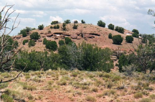 40 Secluded Acres near Snowflake, Navajo County, Arizona